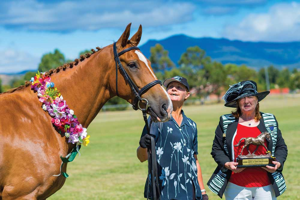 Burnie Horse Show -