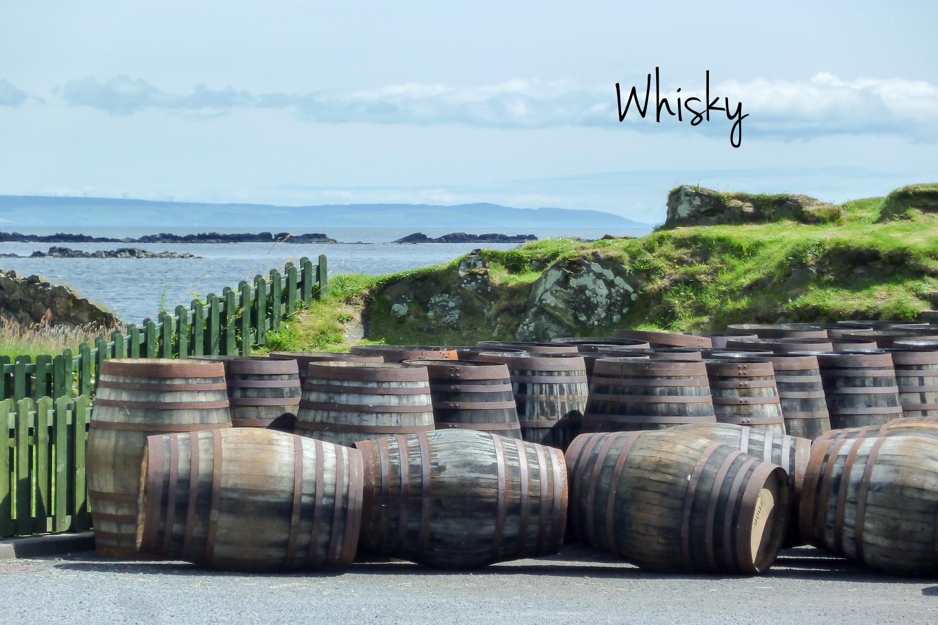 Leer de kleur analyseren, verdiep je in het rijpingsproces en spreek voortaan van afdronk ipv smaak. Boven Islay, hangt altijd een lekker geurtje in de lucht.