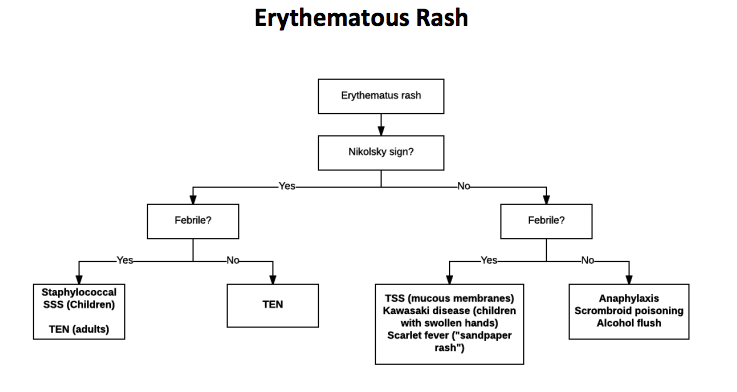erythematous.png