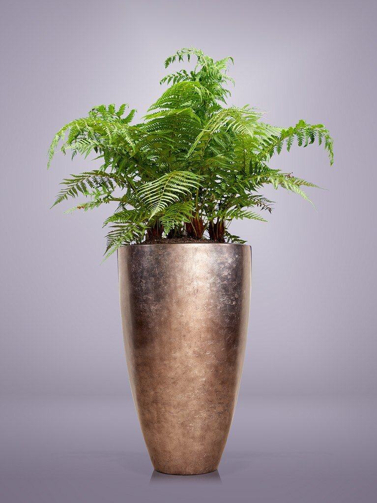 Exclusieve-pot-plant-combinaties-binnen-buiten-2.jpg