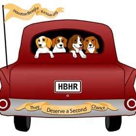 Houston Beagle Rescue.jpg
