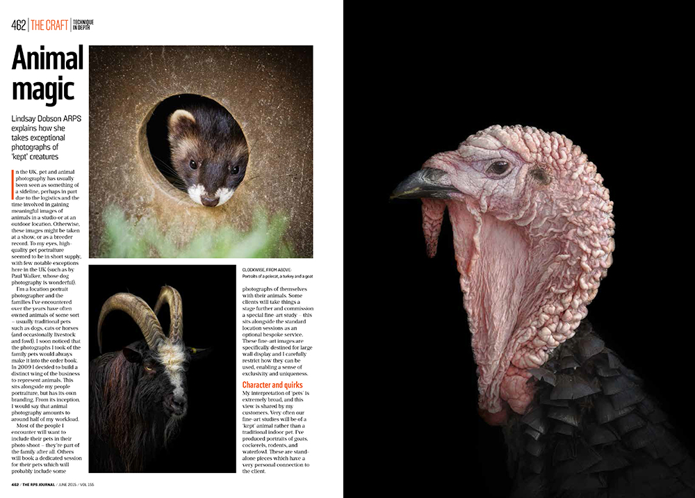 The Journal of the royal photographic society - As one of the most prestigious photography magazines in the world it was fantastic to be asked to contribute to the June 2015 edition of the The Journal. My three page feature was in the subject was fine art portraiture of pets and animals, and how we can overcome the many constraints we might face.