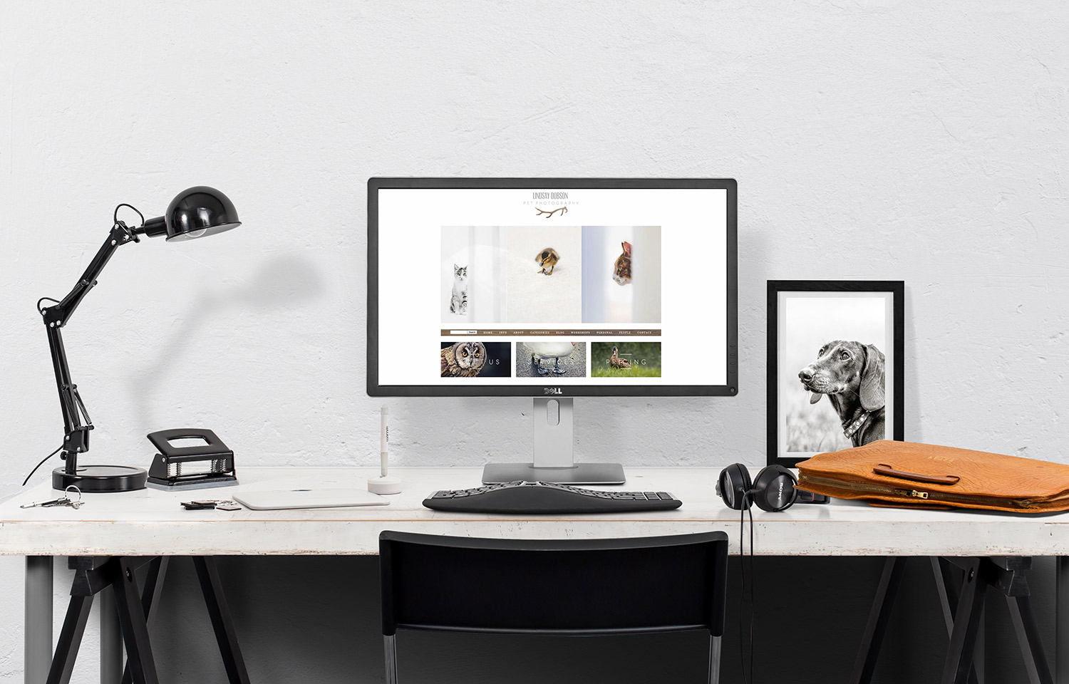 why I switched my pet photography site from wordpress to squarespace