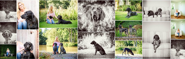 Pet Dog Photographer East Sussex