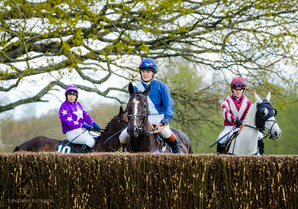 parham point to point 2017-1263.jpg