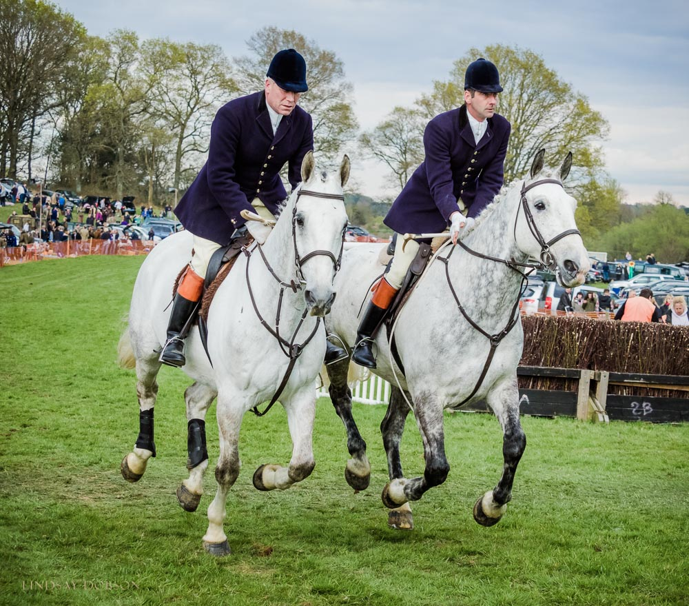 parham point to point 2017-1482.jpg