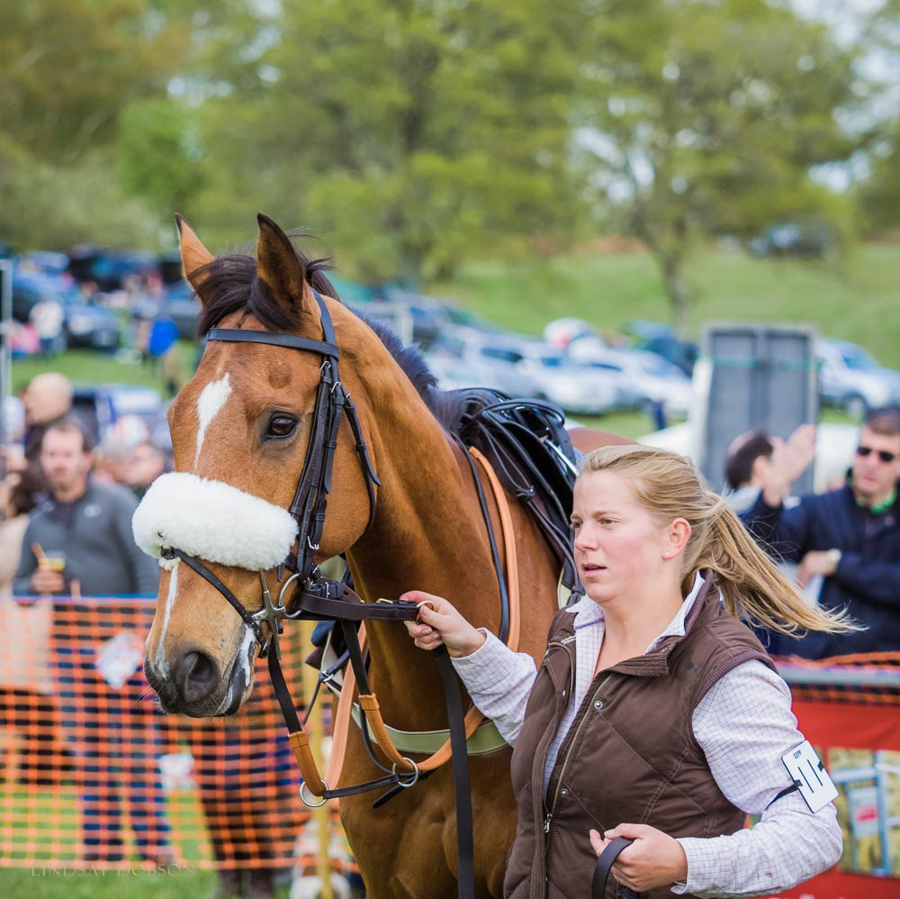 parham point to point 2015-1160.jpg