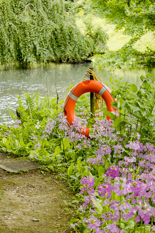 busbridge lakes surrey-36.jpg