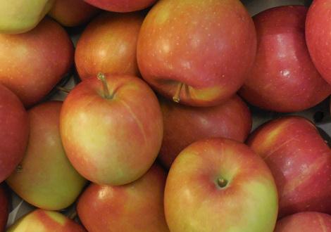 Äpfel -