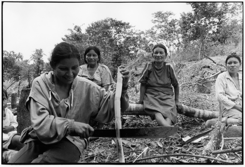 Cutting the Sugarcane , Quichua, Canelos, Pastaza, Oriente Ecuador, Amazonia, 1999