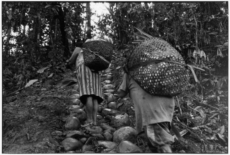 La Pausa, on Return from the Chakra, with Whistling , Quichua, Canelos, Pastaza, Oriente Ecuador, Amazonia, 1999