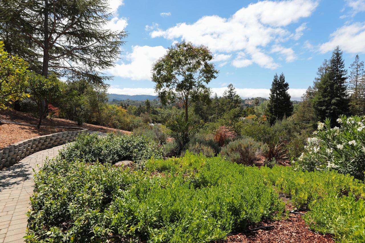 14433 Debell Rd Los Altos Hills Blu Skye Media-3167-X2.jpg