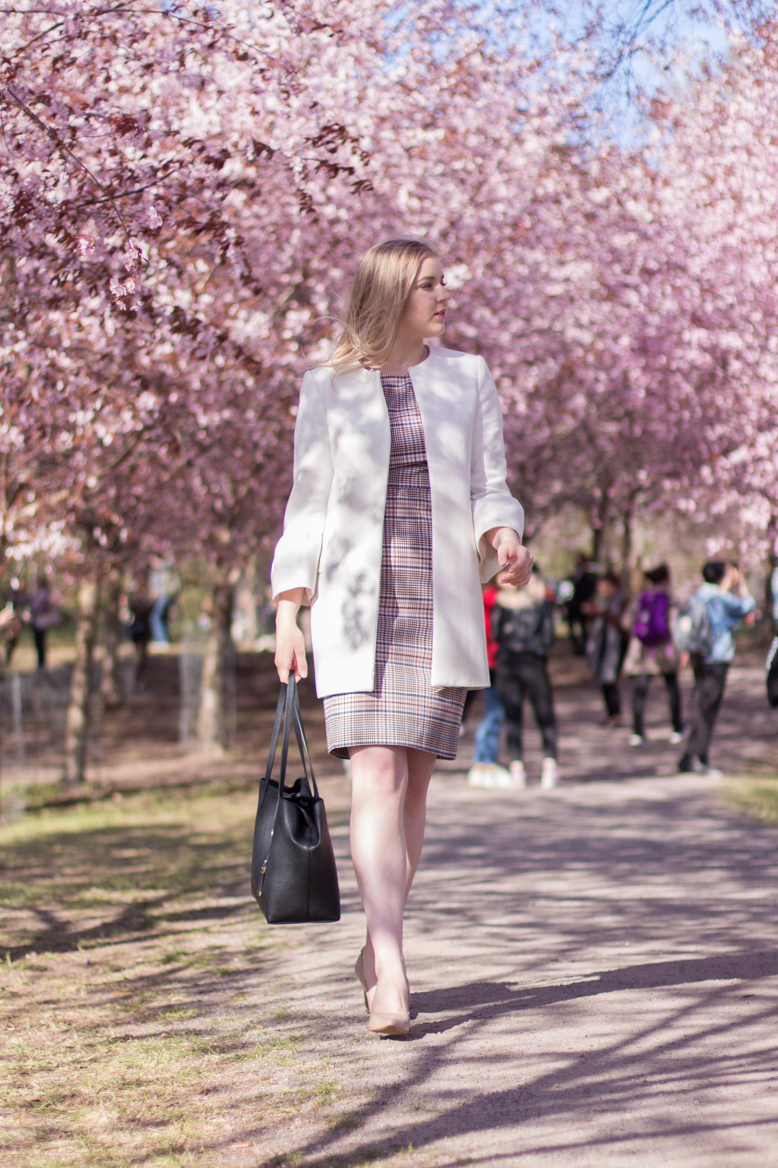 Cherry blossom trees (1 of 5).jpg