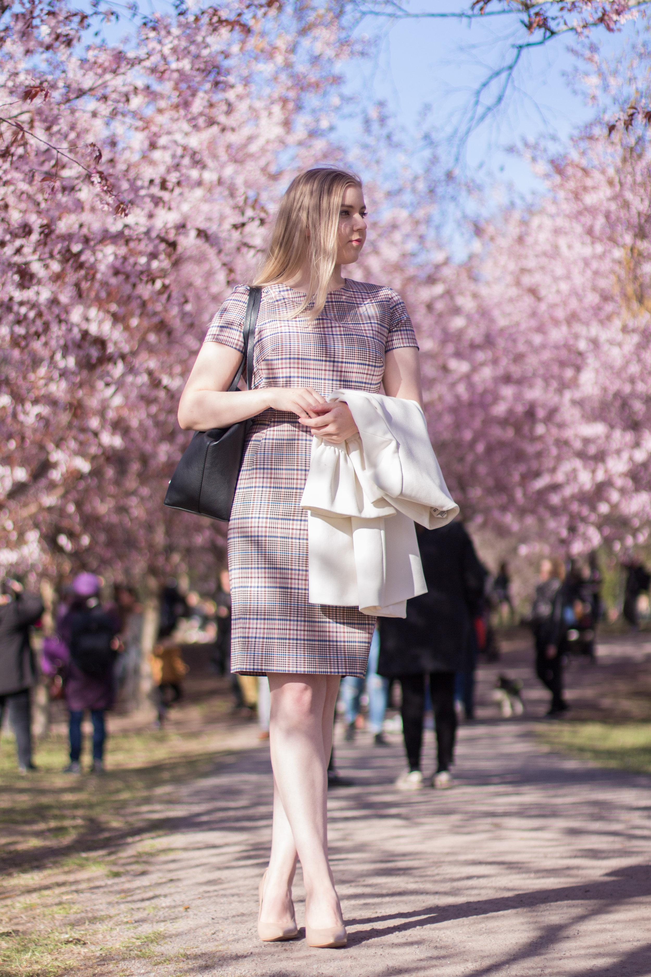 Cherry blossom trees (1 of 16).jpg