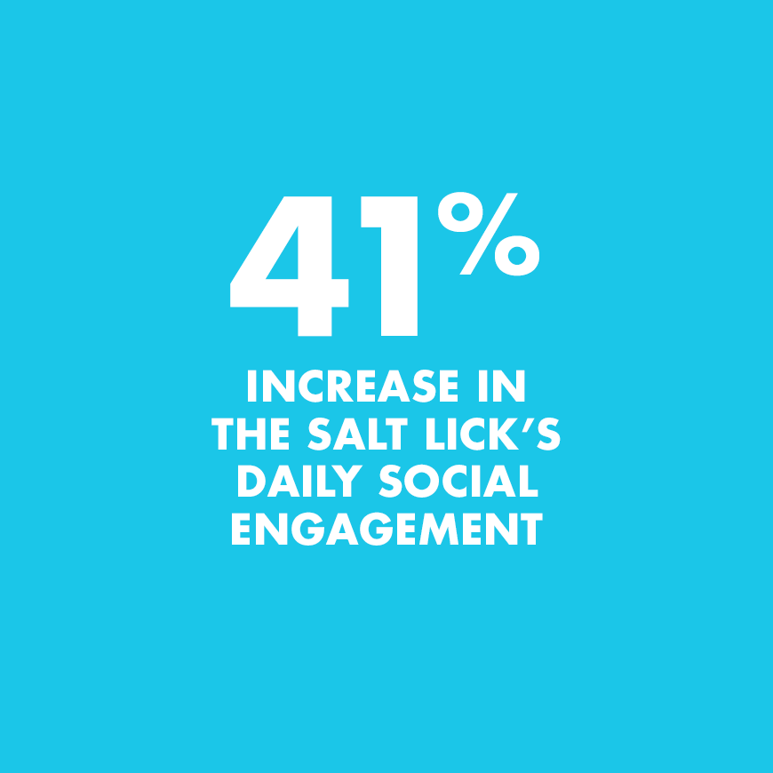 Greatest cCommon Factory increased Salt Lick's Daily Social Engagement 41%