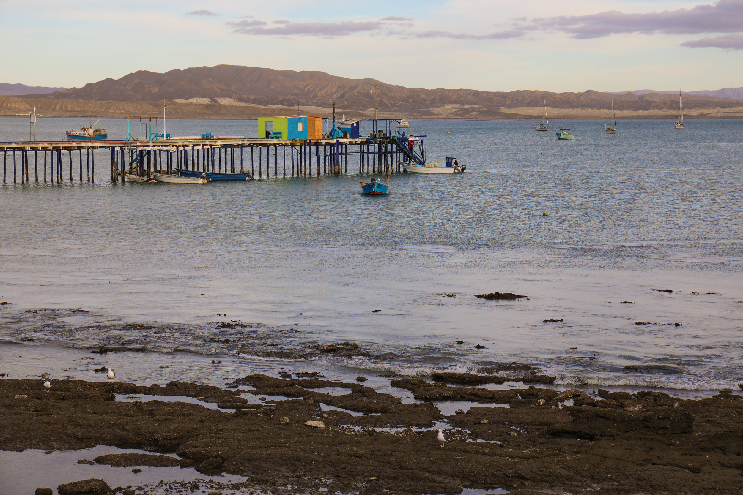 The pier/fuel dock at Turtle Bay