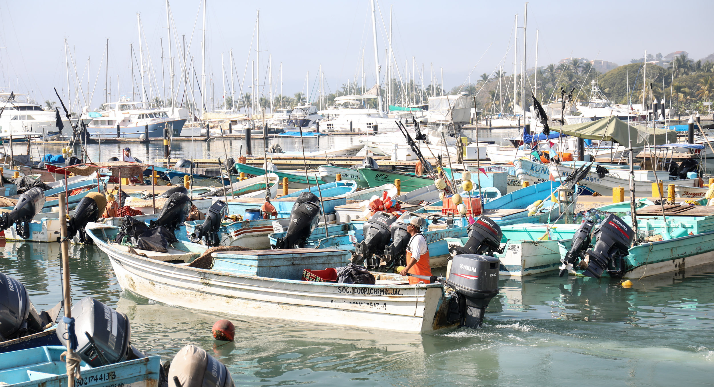 Fishing pangas lined up in La Cruz.