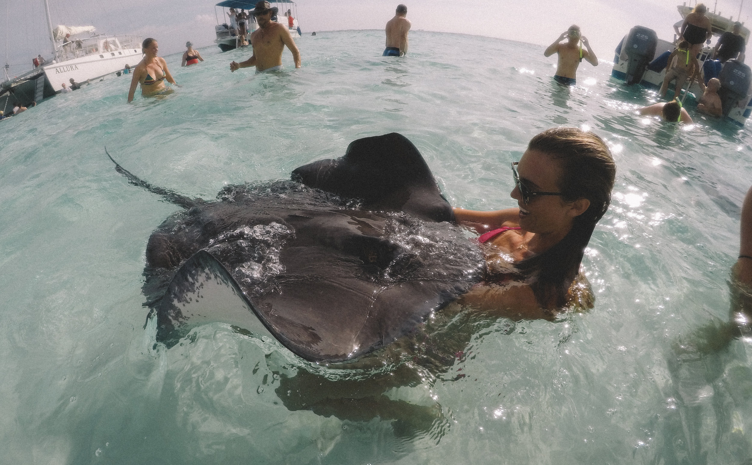 Hanging out with a few locals at Stingray City, Grand Cayman.