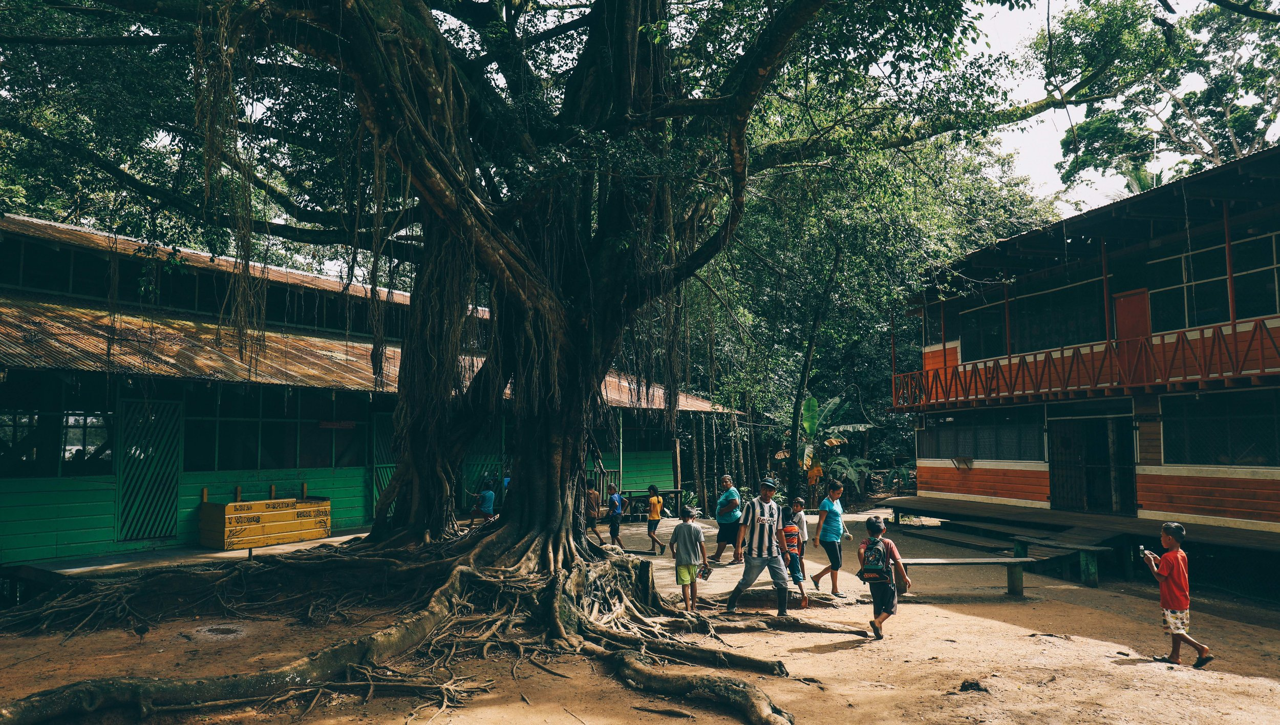 Dinning hall on the left and girls home on the right.