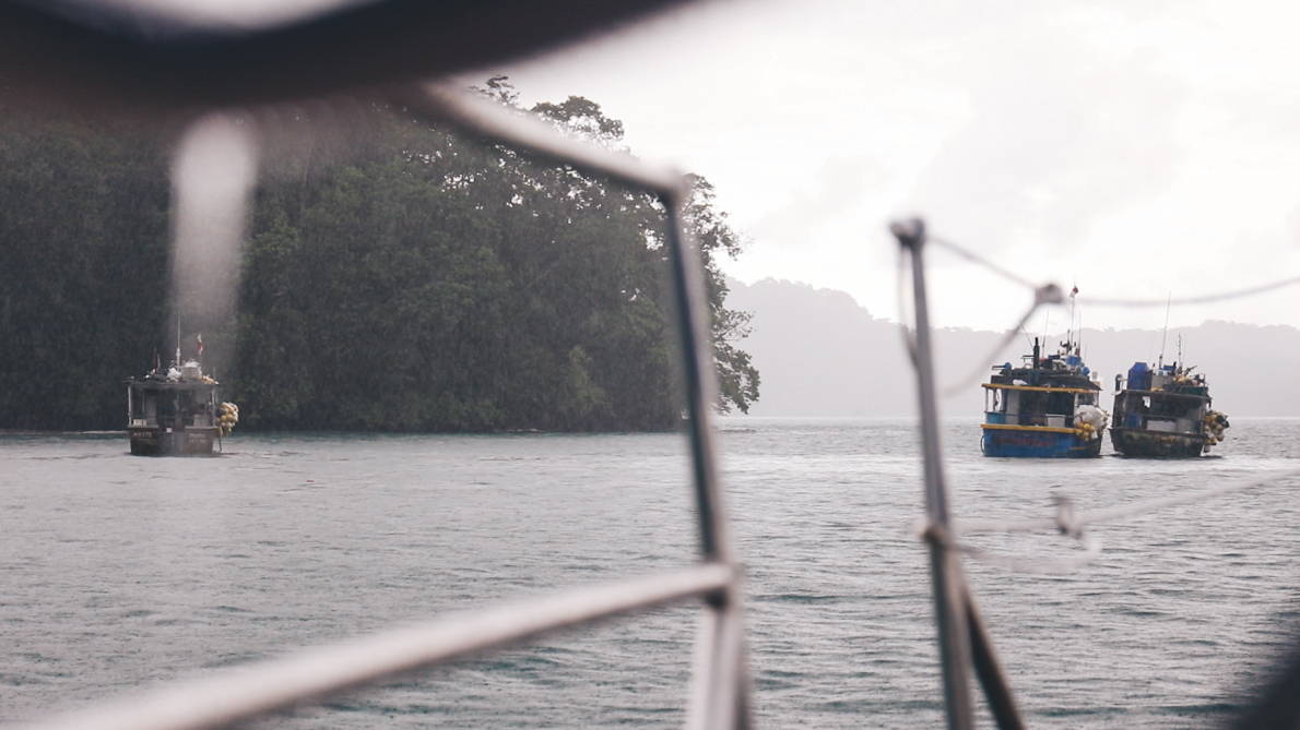Local fishing boats seeking shelter in the lee of the island with us.