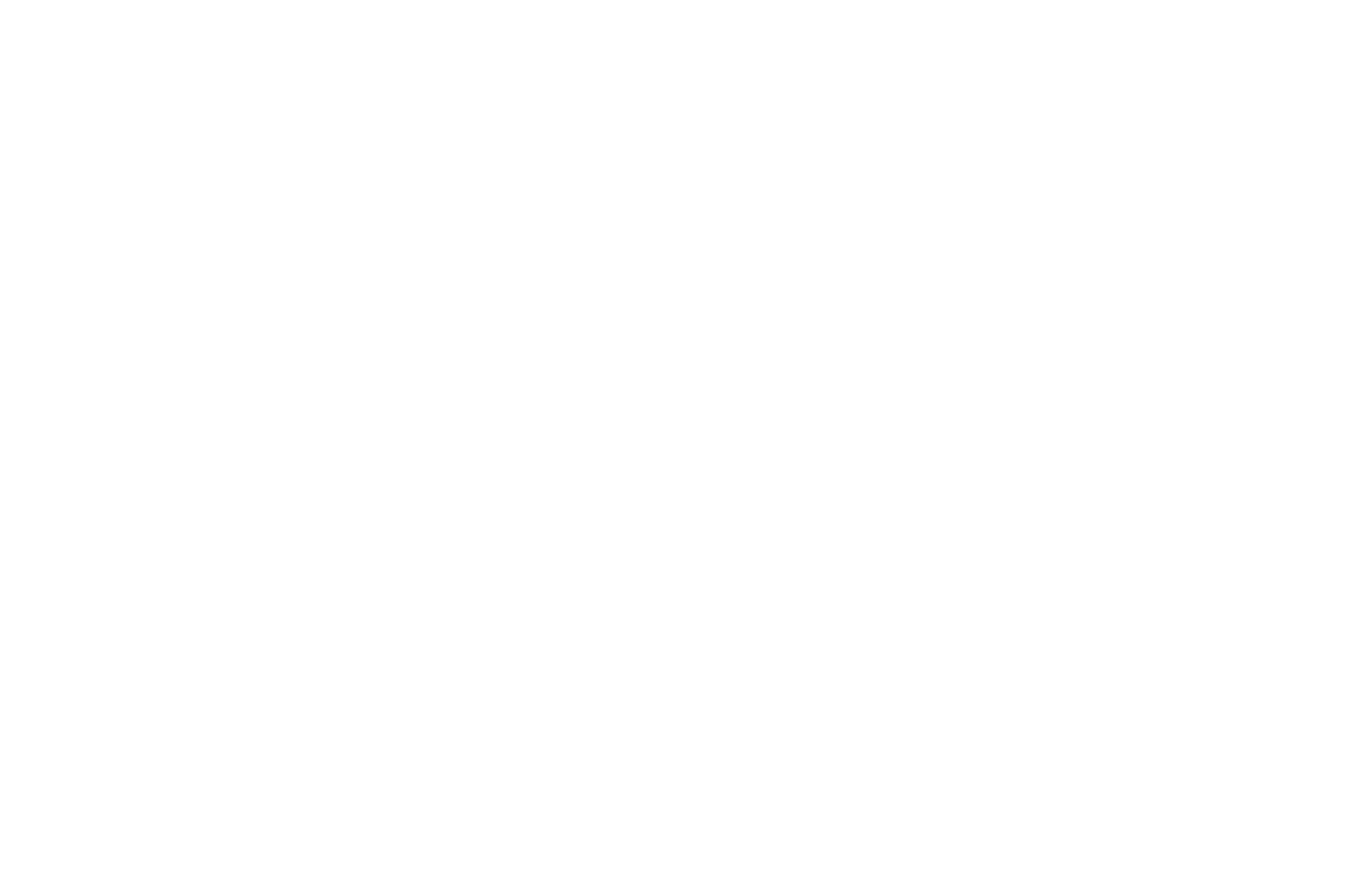 OFFICIAL SELECTION - New Hollywood Film Festival - 2013-2.png