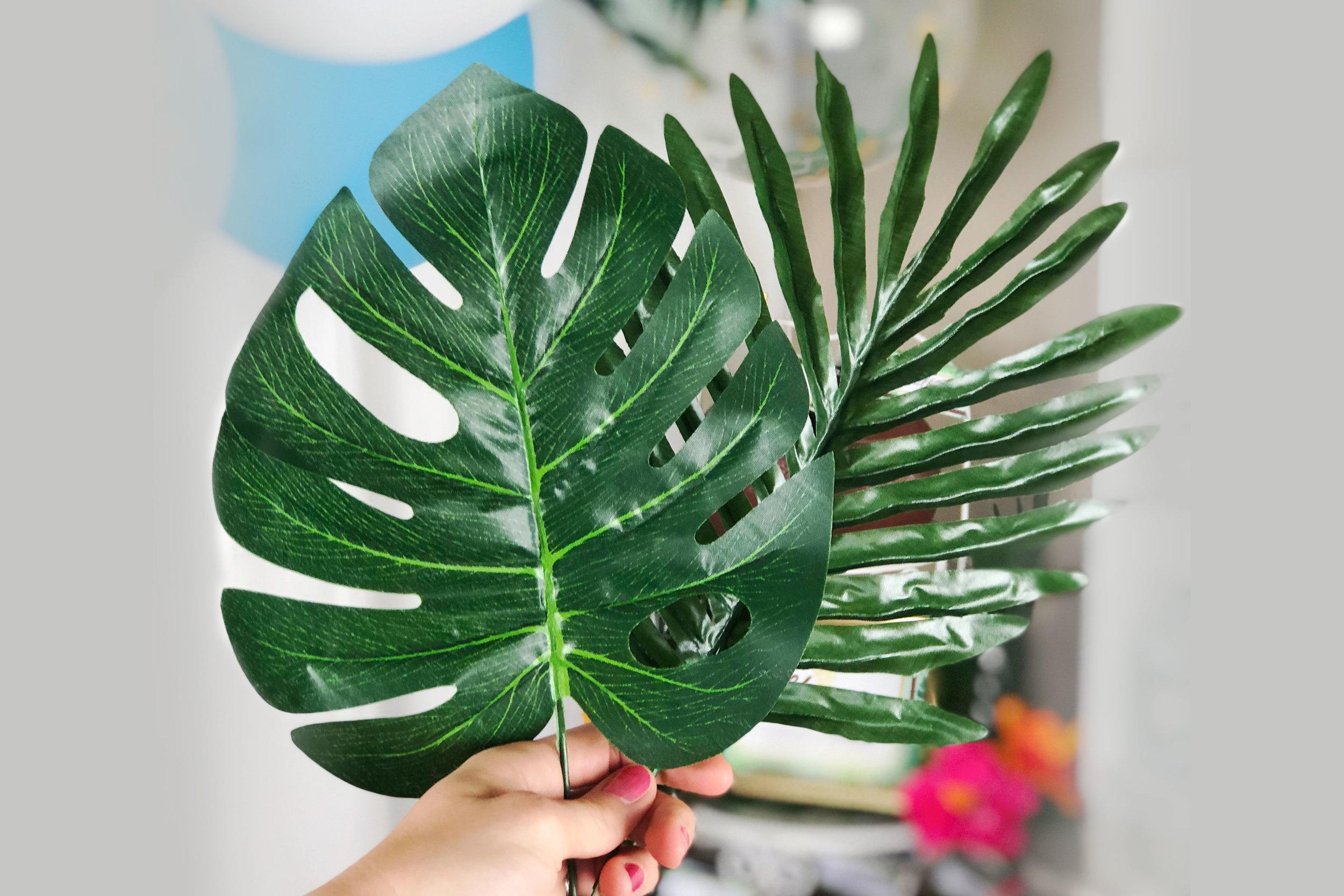 Monstera & Tropical Leaves