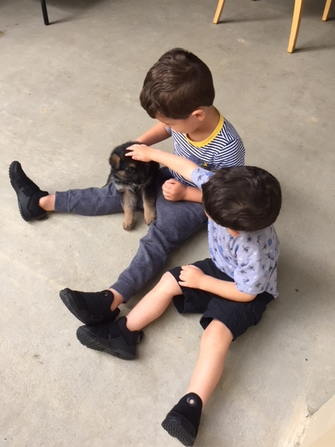 Cute Kids and Puppies!