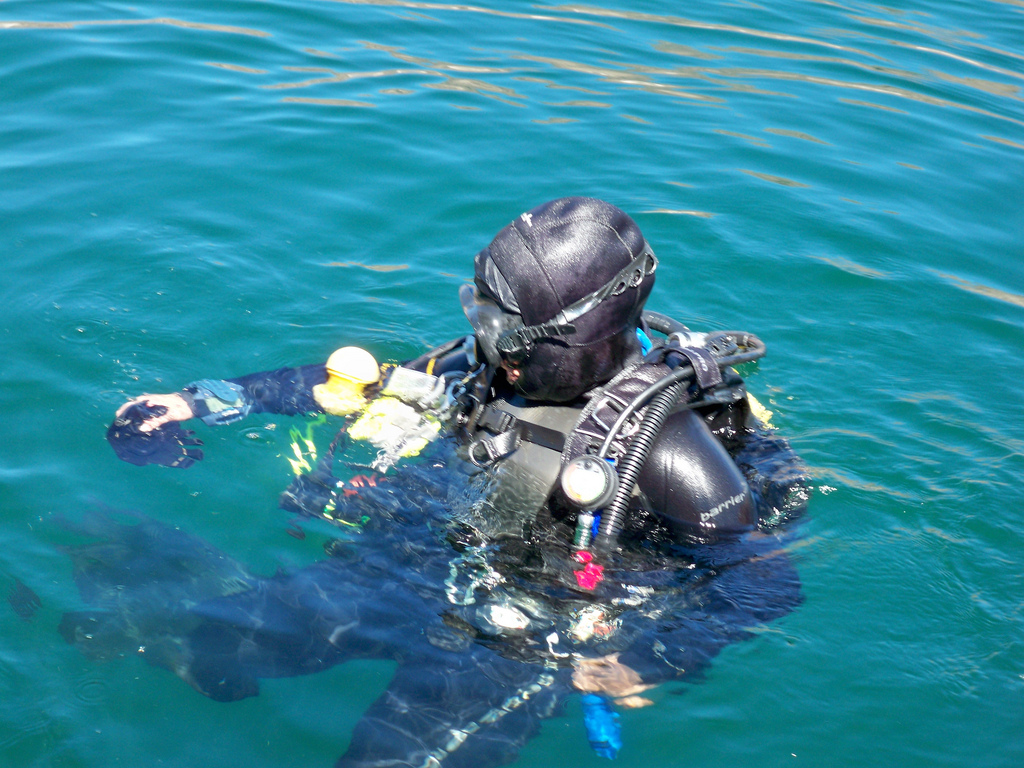 LVMPDSAR DIVE TEAM - Dive Team requires a rigorous selection and training process for new divers. Candidates for the Dive Team need to be prepared physically and mentally prior to applying for a position. Preparation should include water stamina and scuba diving skills.