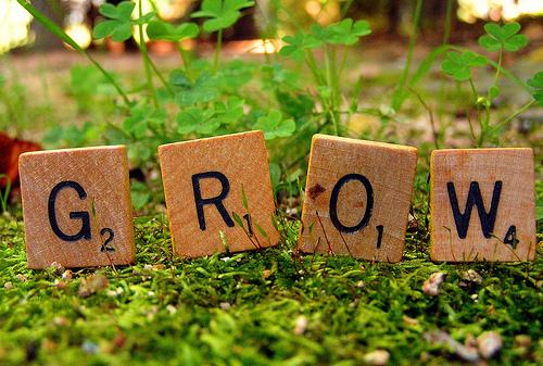 Grow - BLOG 3.jpg