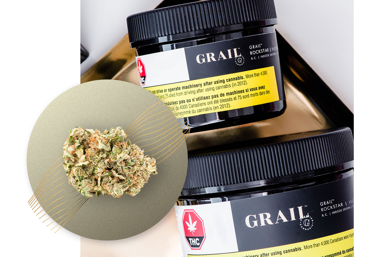Rockstar - Descendant of Sensi Star and Rockbud, Grail Rockstar is a go-to for heavy indica lovers. The aroma of spice and grape will accompany the heavy sedative effects.INDICA High PotencyIndoor Grown, Dried Cannabis Flower: 1g, 3.5g, 15gTERPENESCaryophyllene, Terpinolene, LimoneneFLAVOUR PROFILEEarthy, Skunky