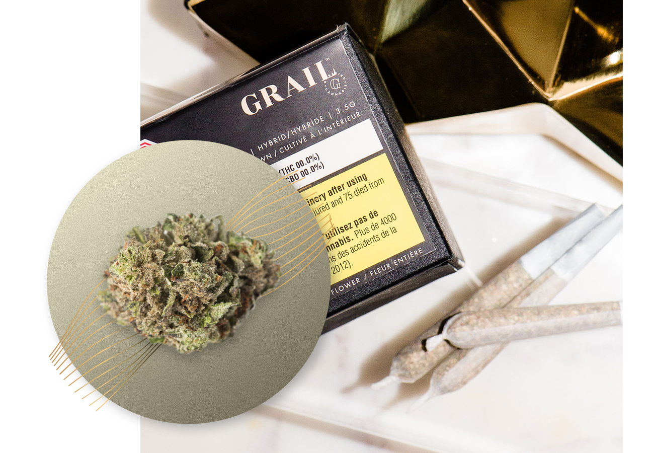 PINK KUSH - An indica-dominant relative of OG Kush, Pink Kush offers dark mossy green buds with slight orange, lash-like hairs. High in limonene, with secondary terpenes caryophyllene and linalool, this reliable hybrid strain offers citrus, floral and earthy undertones.HYBRID High PotencyIndoor Grown, Dried Cannabis Flower: 1g, 3.5g, 15gTERPENESLimonene, Caryophyllene, LinaloolFLAVOUR PROFILECitrus, Floral, Musky