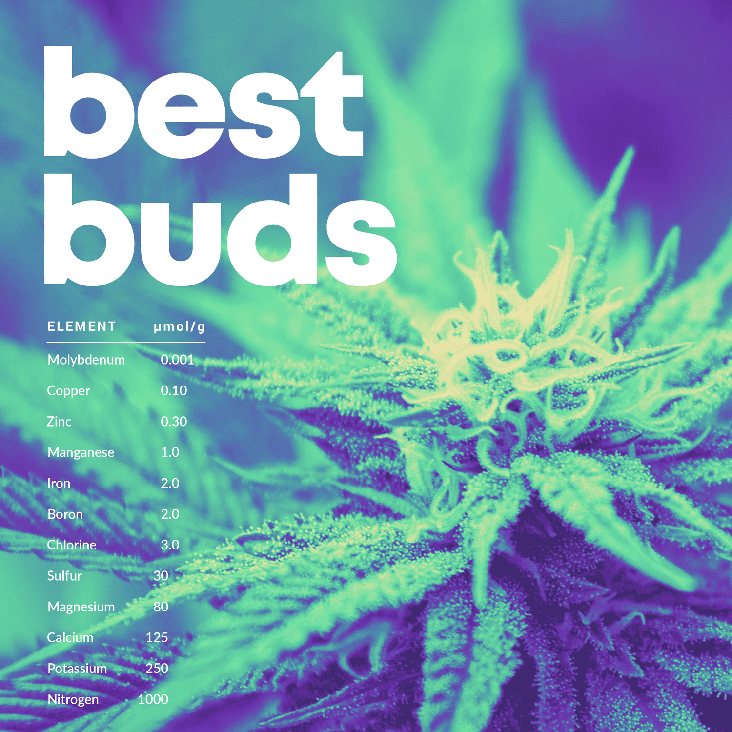 CannabestLabs_BestBuds.png