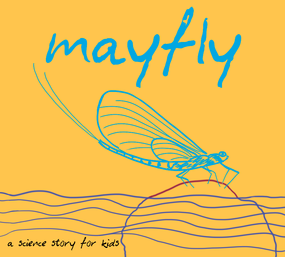 Mayfly  cover illustration by Michael Connors