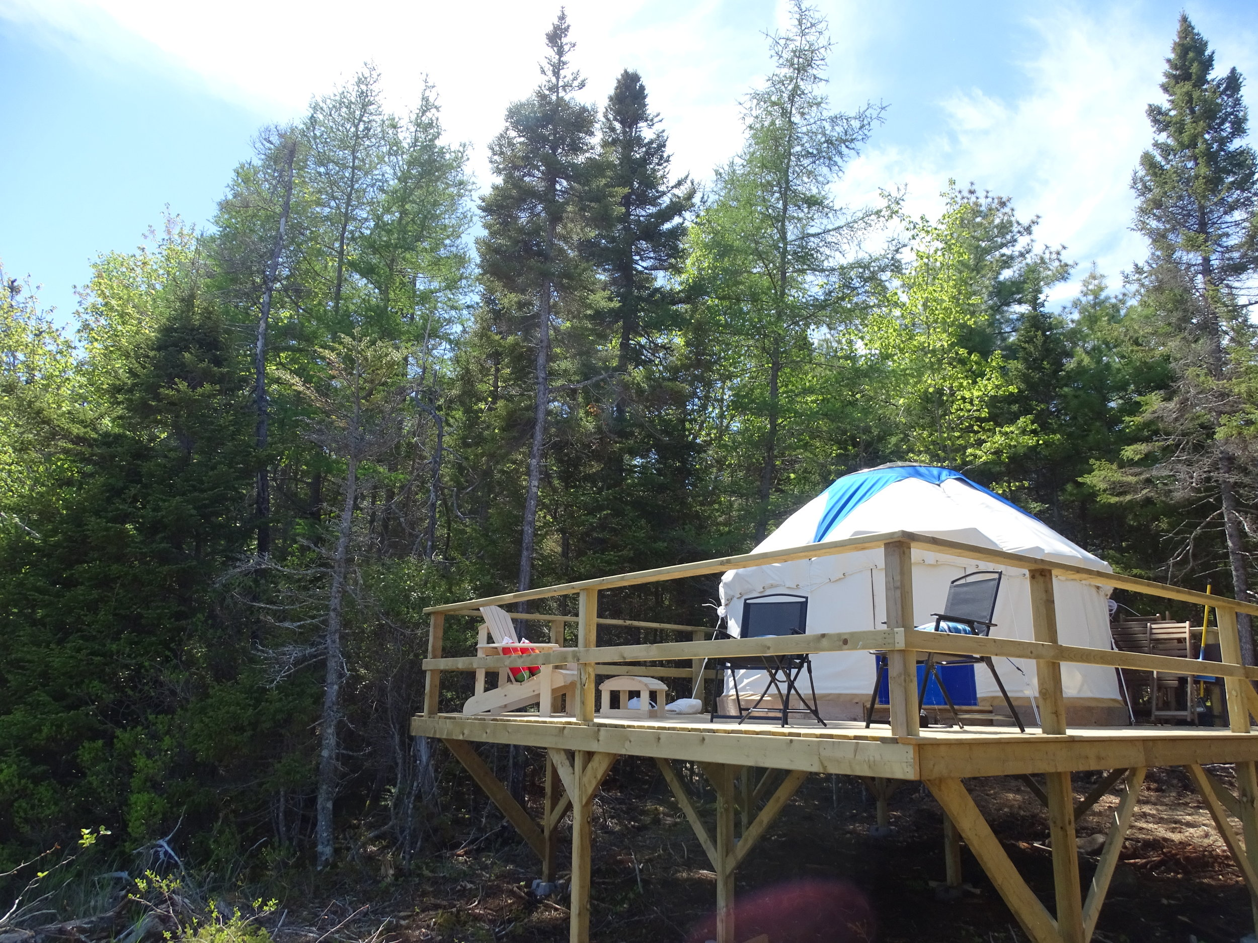 Look how happy our yurt looks, up in its treehouse!