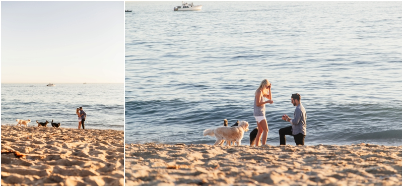 proposal on the beach in southern california