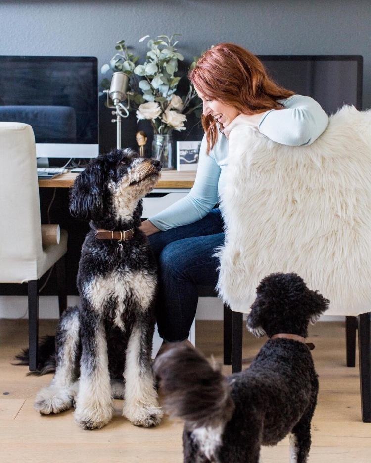 female entrepreneur sitting at desk with her dogs