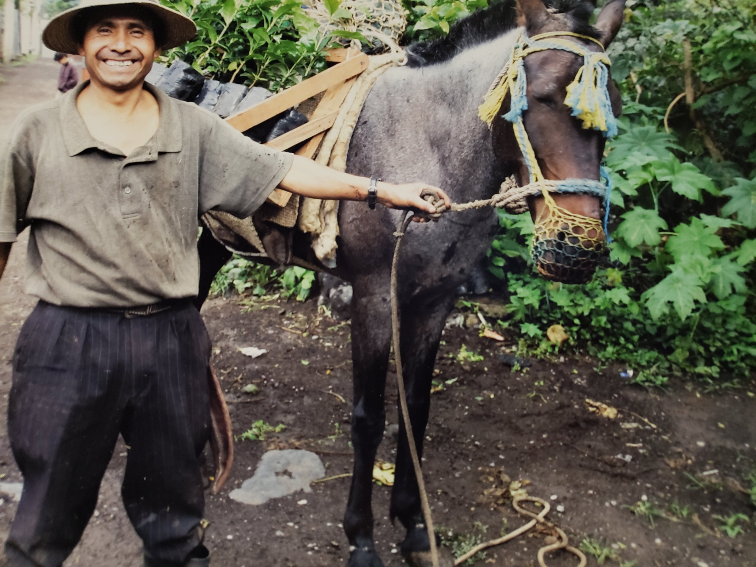 Alberto [above] is the coffee farmer we source our coffee from!