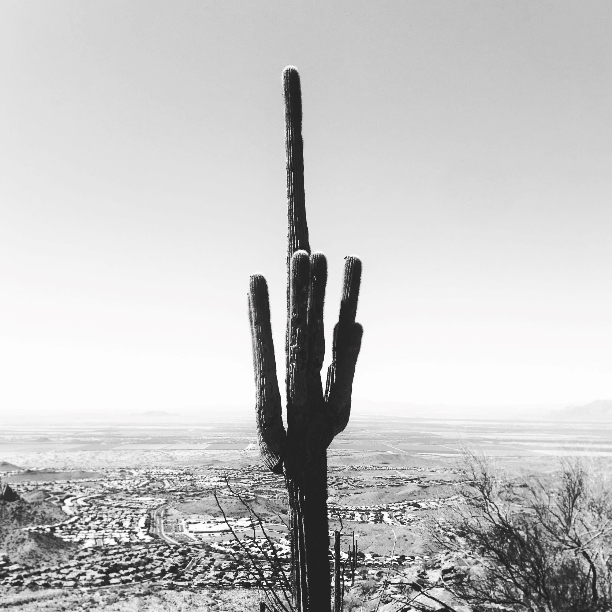 tolleson arizona.jpg