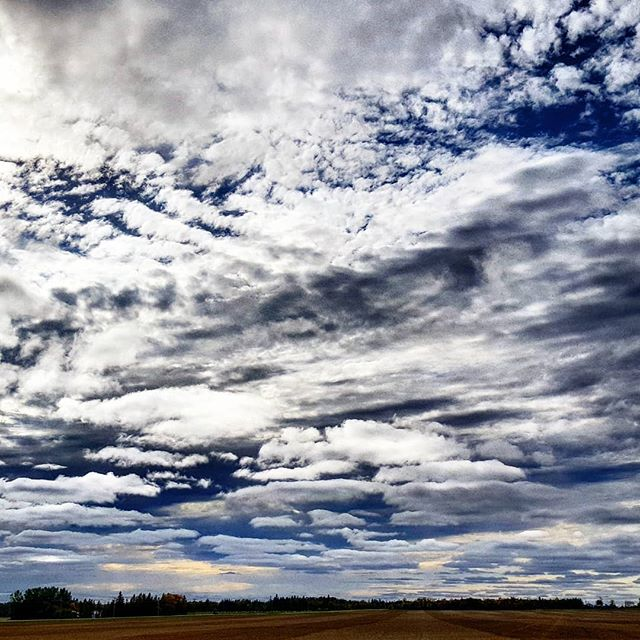 So many clouds. Things have been hectic  lately with so many transitions and  I've always found joy in the clouds - they are a reminder to breathe and take a minute to enjoy the beauty right in front of us. So that's what we're doing today. . . . #prairiesky #prairieclouds #wideopenspaces #nothintoblockyourview #lookup #chasingclouds #chasingcloudsdaily #headup #transitions #thesunalwaysrises #breathe #slowdown #mindfulness #pyjamaday #cocooning #cloudstagram #cloudscape #lightanddark #crazyclouds #canadianphotographer #epicsky #dorilainart #copingwithanxiety #lifelessons #lifeismadeofsmallmomentslikethis #lifeismadeofmoments #naturedidit