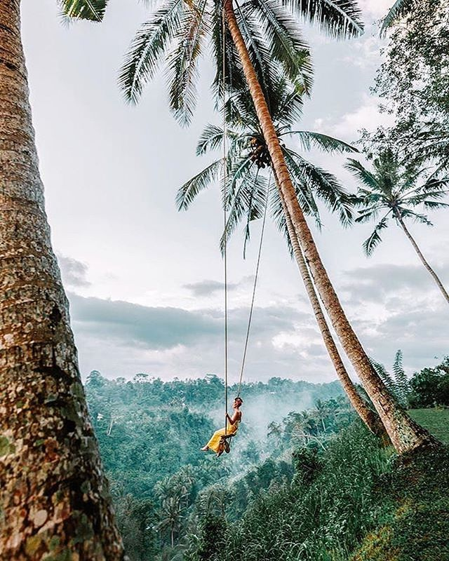 Swinging into paradise 📸 : @lilyrose