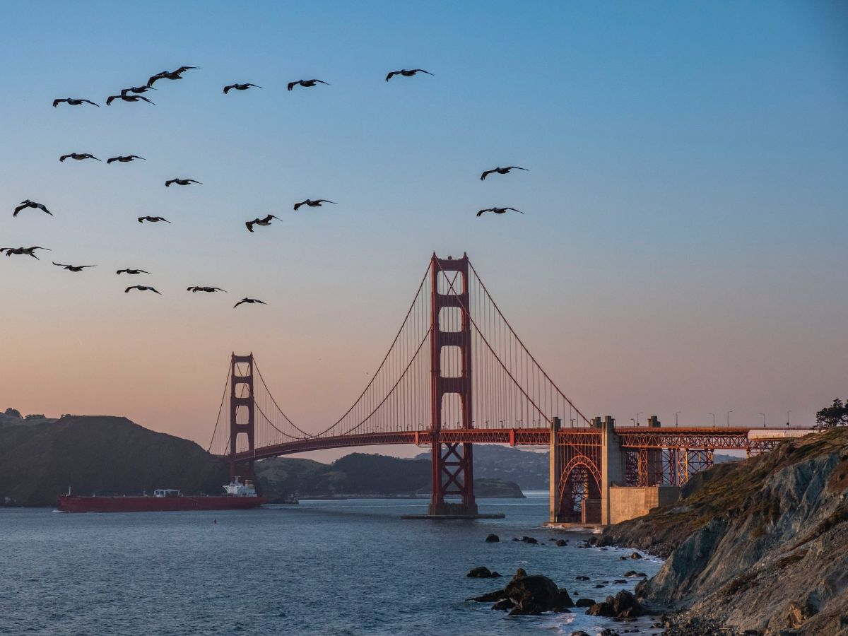 San Francisco - The city by the bay is calling, and we think you should answer.
