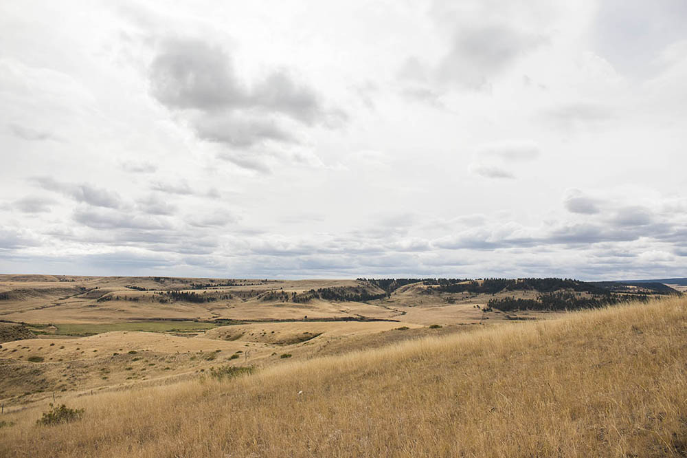 Grass Range, Montana.