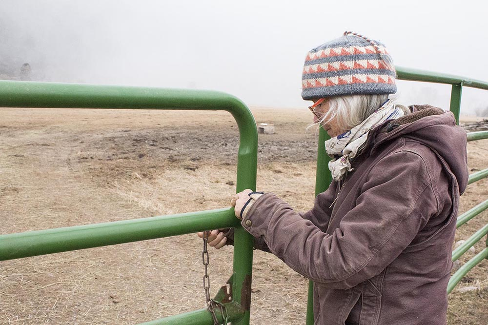 Liza opens a gate to check cows on pasture.