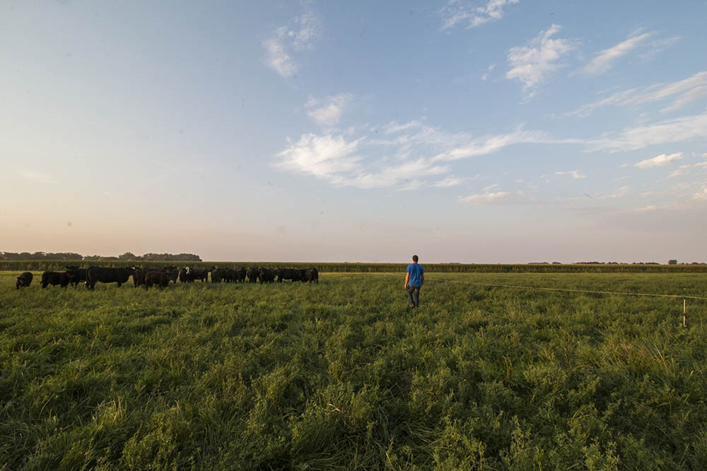 Sean on a pasture at Hyatt Family Farm.