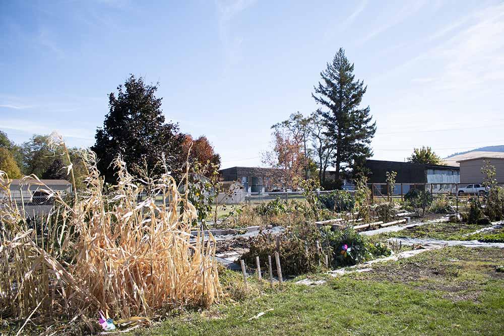 La Grande Community Garden.