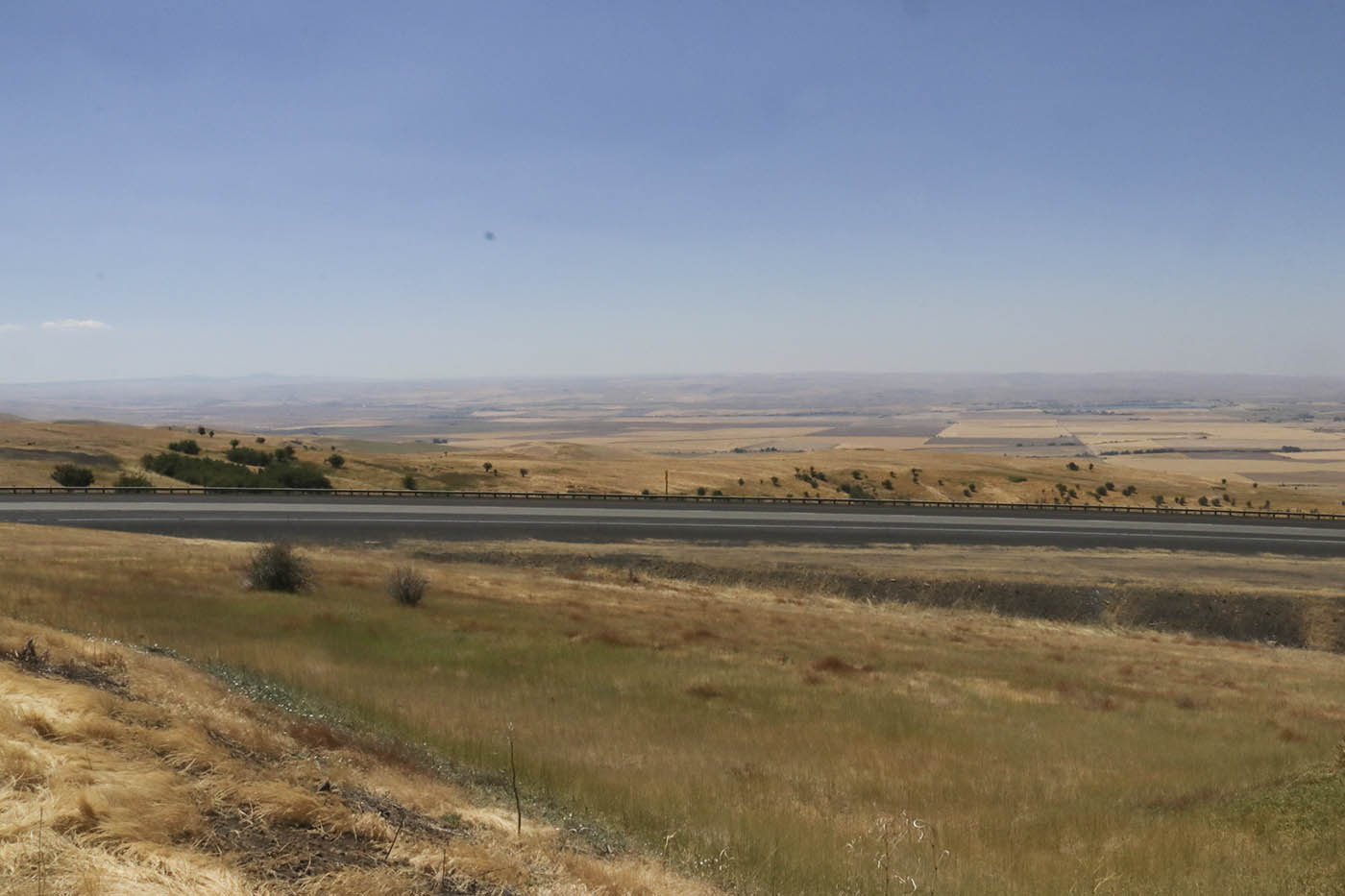 Morrow County, Oregon.
