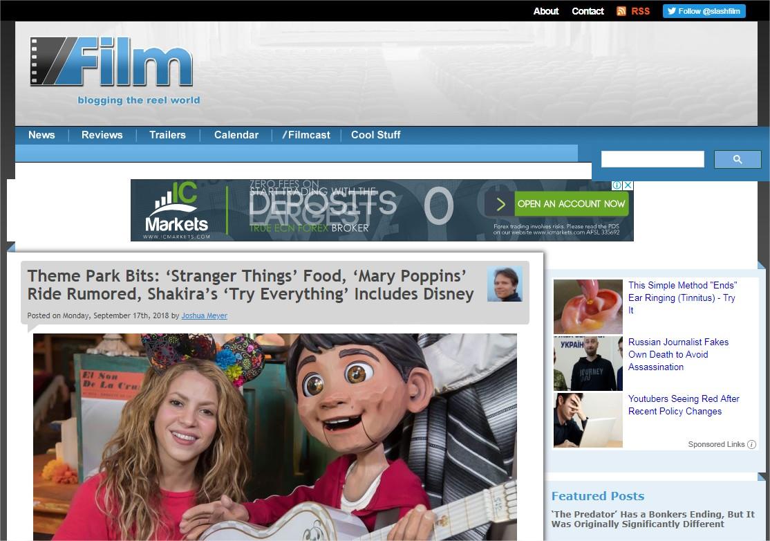 Film  Blogging the Reel World - Google Chrome.jpg