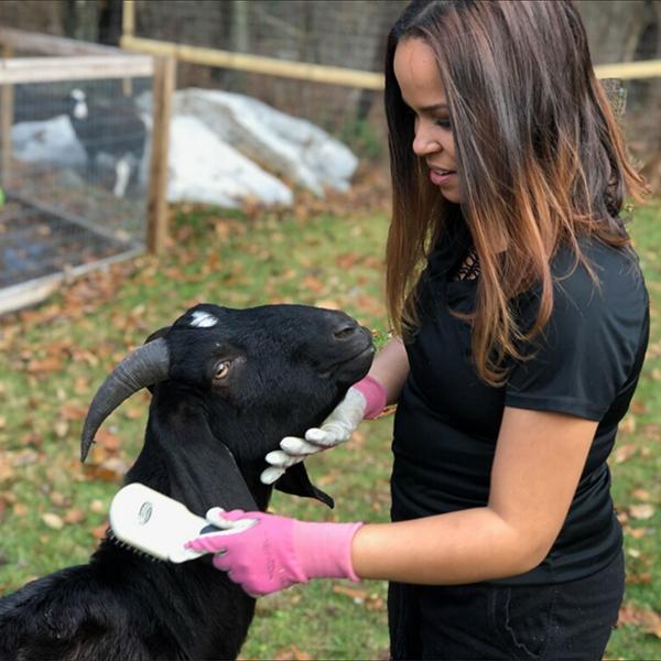 Mariceli Riley Farm Rescue Volunteer.jpg