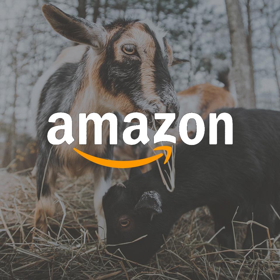 Amazon Wish List Thumbnail Riley Farm Rescue.jpg