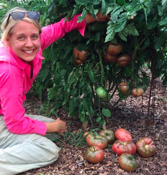 Pressly admiring her favorite cherokee purple tomato